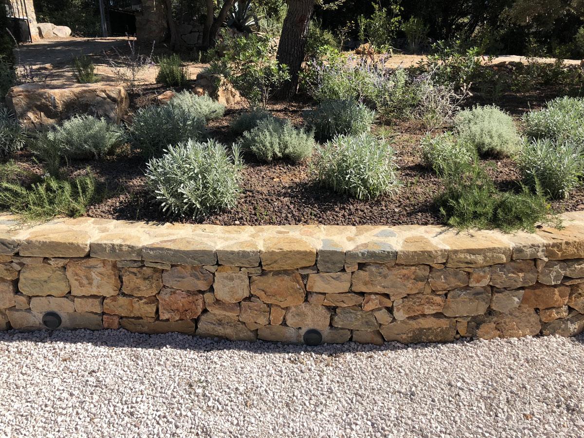 Entretient de jardin par sud créations paysages