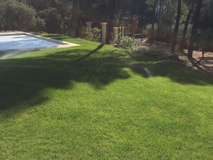 entretien de jardin et pelouse