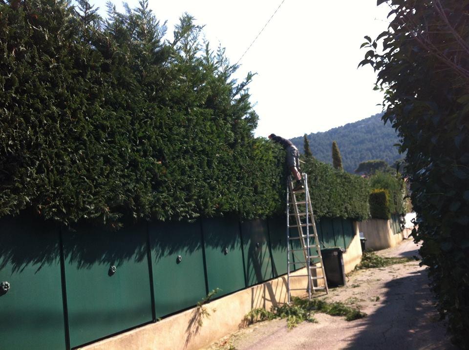 Pose de pelouse synthétique